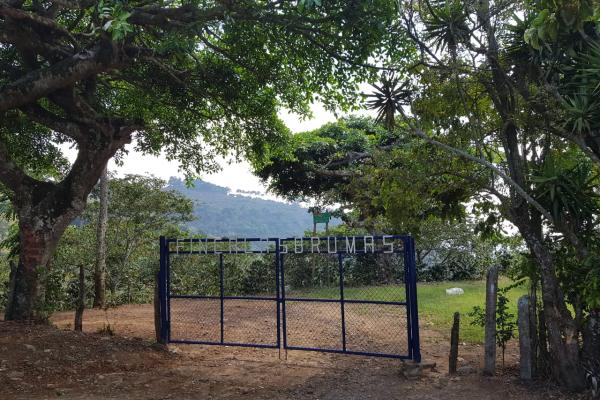 El Salvador Kaffee Farm Las Brumas