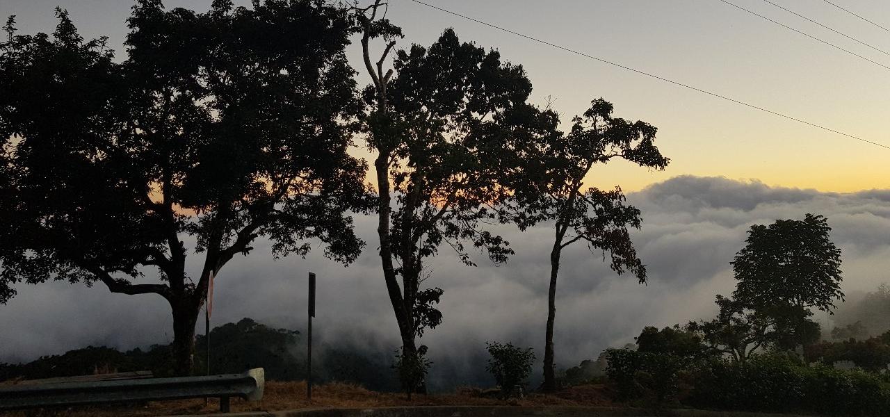 Panorama Kaffeefarm El Salvador