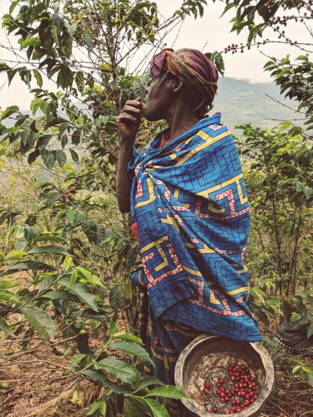 Farmerin beim Ernten in Ruanda