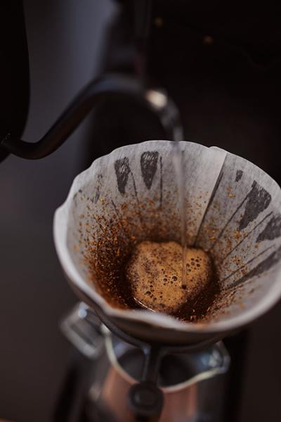 Wildkaffee Rösterei - Brew Kurs - Kaffee Filterzubereitung
